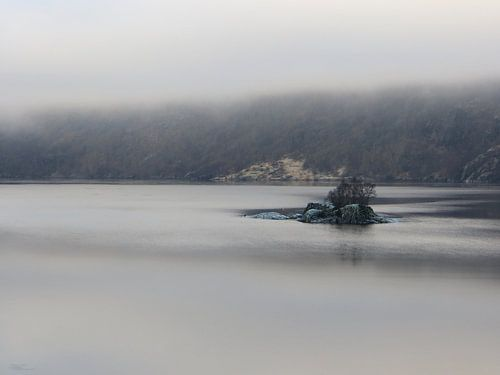 Green Rocks in a foggy Fjord van