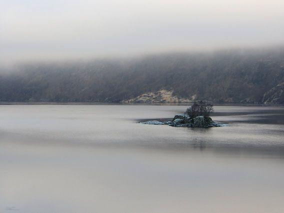Green Rocks in a foggy Fjord