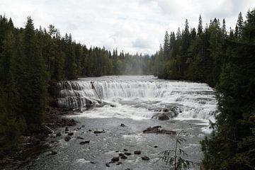 Dawson Falls van Anouk Noordhuizen