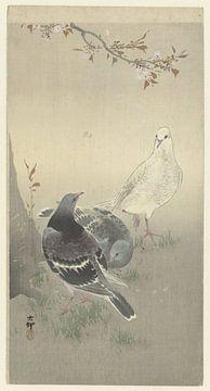 Drie tamme duiven, Ohara Koson