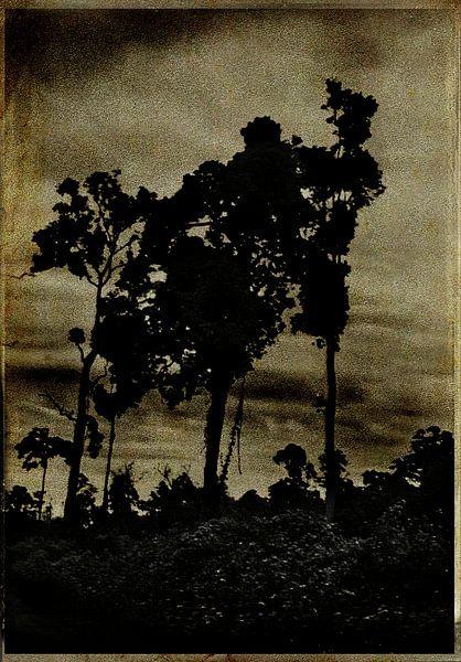 Les ombres noires van sophie etchart