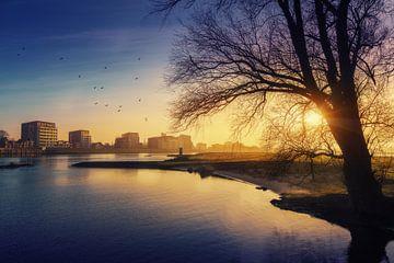 Zonsopgang bij Deventer Pothoofd met vogels en boom op de voorgrond. van Bart Ros