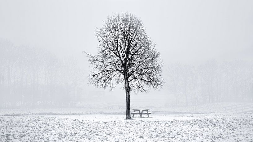Winter in Nederland van Delano Balten