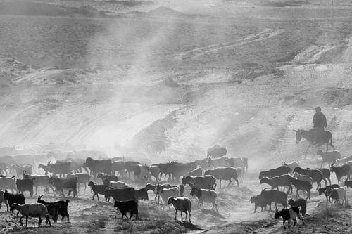 Kudde met herder van Johan Zwarthoed