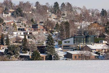 Het hulsveld in de sneeuw bij Simpelveld van