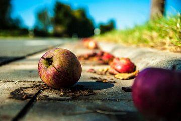 Appels in de slootq van Norbert Sülzner