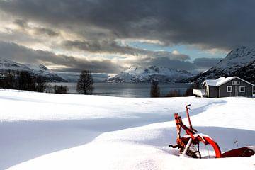 Winter von Hans Vellekoop