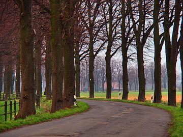 Landweg bocht van Edgar Schermaul