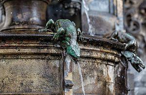 Salamander waterspuwer Cholerabrunnen