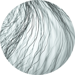 Donkere vezels grijs van Jörg Hausmann