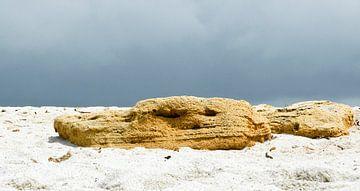 'Trol op quartz strand' van Erna Kampman