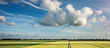 Espace dans le polder sur Bo Scheeringa Photography