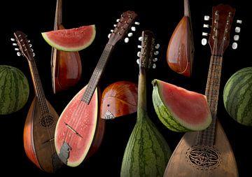 Mandolina Melona van Olaf Bruhn
