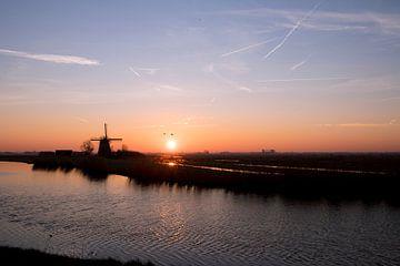 Fräsen bei Sonnenaufgang von André Dijkshoorn