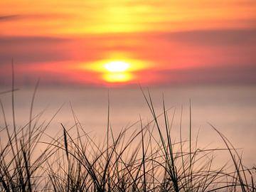 Kleurrijke zonsondergang met op de voorgrond helmgras von Matthijs Noordeloos