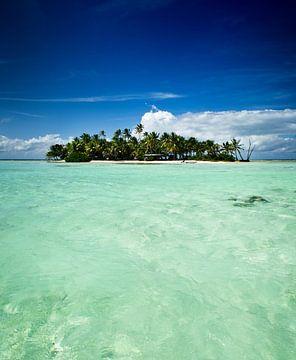 Tropische unbewohnte Insel im Pazifischen Ozean