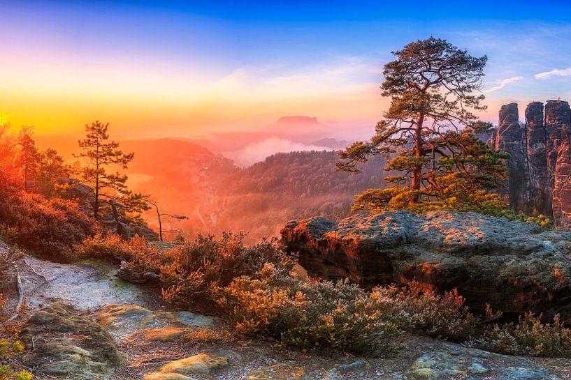 Blick in die Sächsische Schweiz III von Daniela Beyer