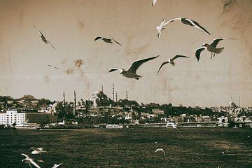 Mit einem Boot auf dem Bosporus von Caught By Light