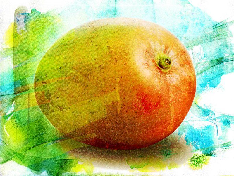 Mango van Erik-Jan ten Brinke