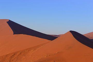Namibië woestijn, Sossusvlei van GoWildGoNaturepictures
