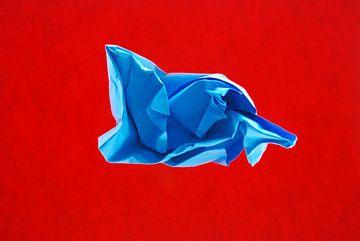rood blauw van Brigitte van Ark