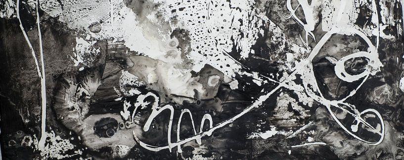 Zwart wit van Edith Lüthi