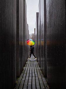 Rainbow umbrella at the Holocaust memorial.