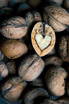 het hart van een walnoot van