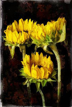 Zonnebloemen van Peter Baak