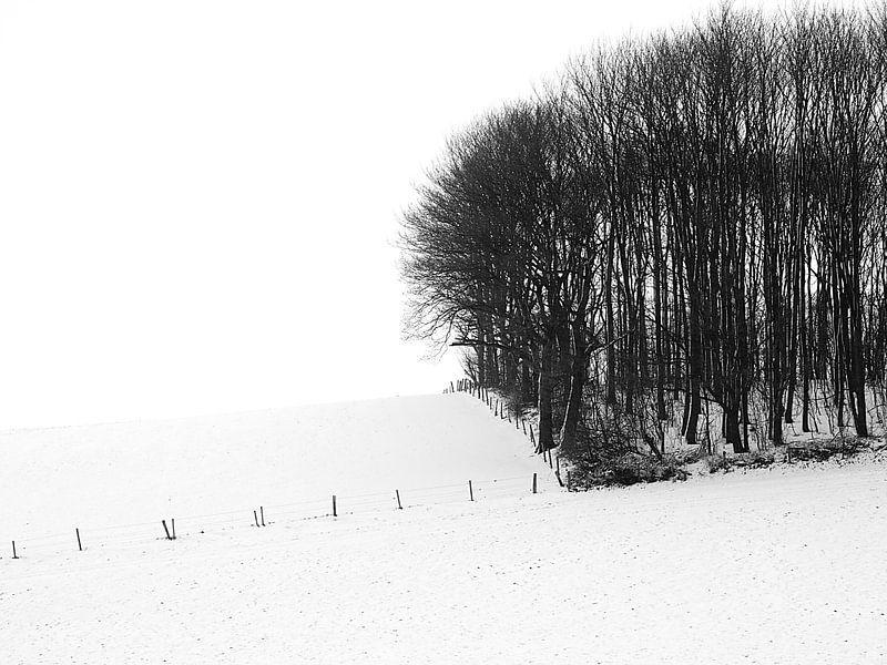 Bos en Hek van Douwe Schut