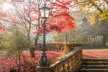 Milder Herbsttag im Neropark van Christian Müringer