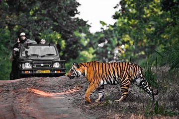 Een tijger steekt de weg over voor een jeep. van Michael Semenov