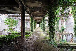 Verlassener gewachsener Korridor.