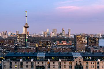 Skyline met Euromast van Prachtig Rotterdam