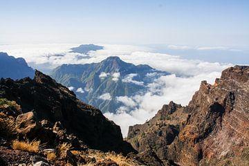 hoogste punt berg op la palma van Rick Van der bijl