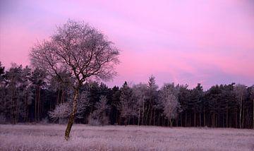 paars landschap van Jeroen Grit