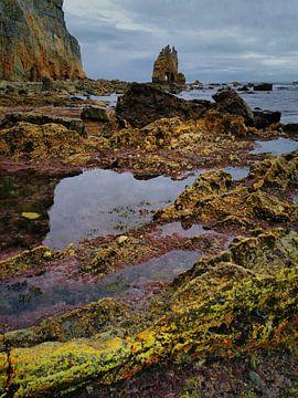 Beach Asturias van Saskia Dingemans