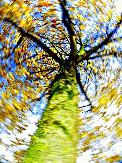 wervelwind ; dol op herfst!