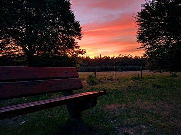 Sonnenuntergang am Dwingelderveld von Timo van Beelen