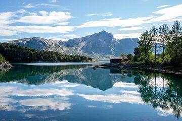 Spiegelung in einem See in Norwegen von Ellis Peeters
