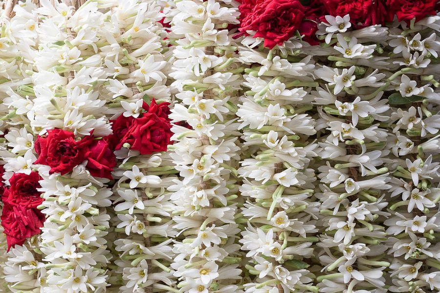 Bloemenslingers van rode rozen en witte jasmijn van Danielle Roeleveld