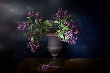 Flower bomb.Still leven met paarse seringen . aanbieding van Saskia Dingemans
