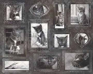 Vintage Kätzchen Liebe von Christa Thieme-Krus
