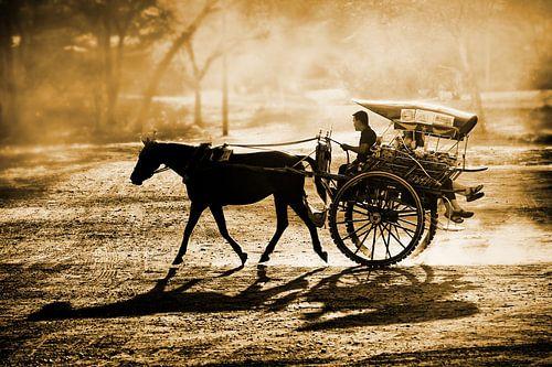 Dusty horse ride