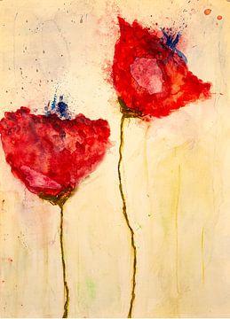 Zwei Mohnblumen mit blauen Knospen von Klaus Heidecker