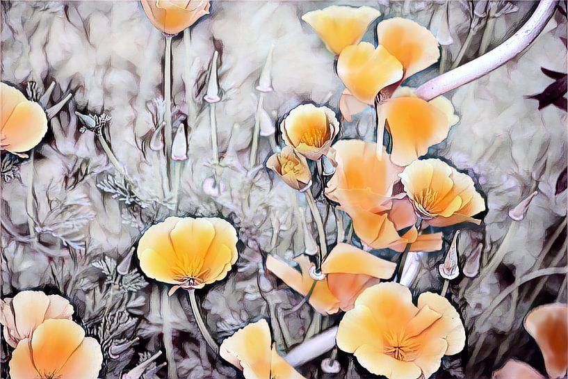 Gelber Kalifornischer Mohn von Patricia Piotrak
