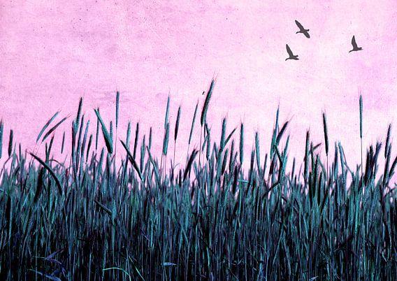 Kornfeld in blau van Rosi Lorz