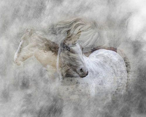 Wirbelnde Pferde