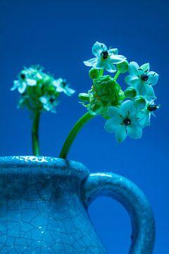 Close up van een blauwe crackelee vaas met witte bloemetjes tegen een blauwe achtergrond sur Natascha Teubl