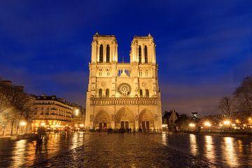 Notre-Dame regenachtige avond van Dennis van de Water